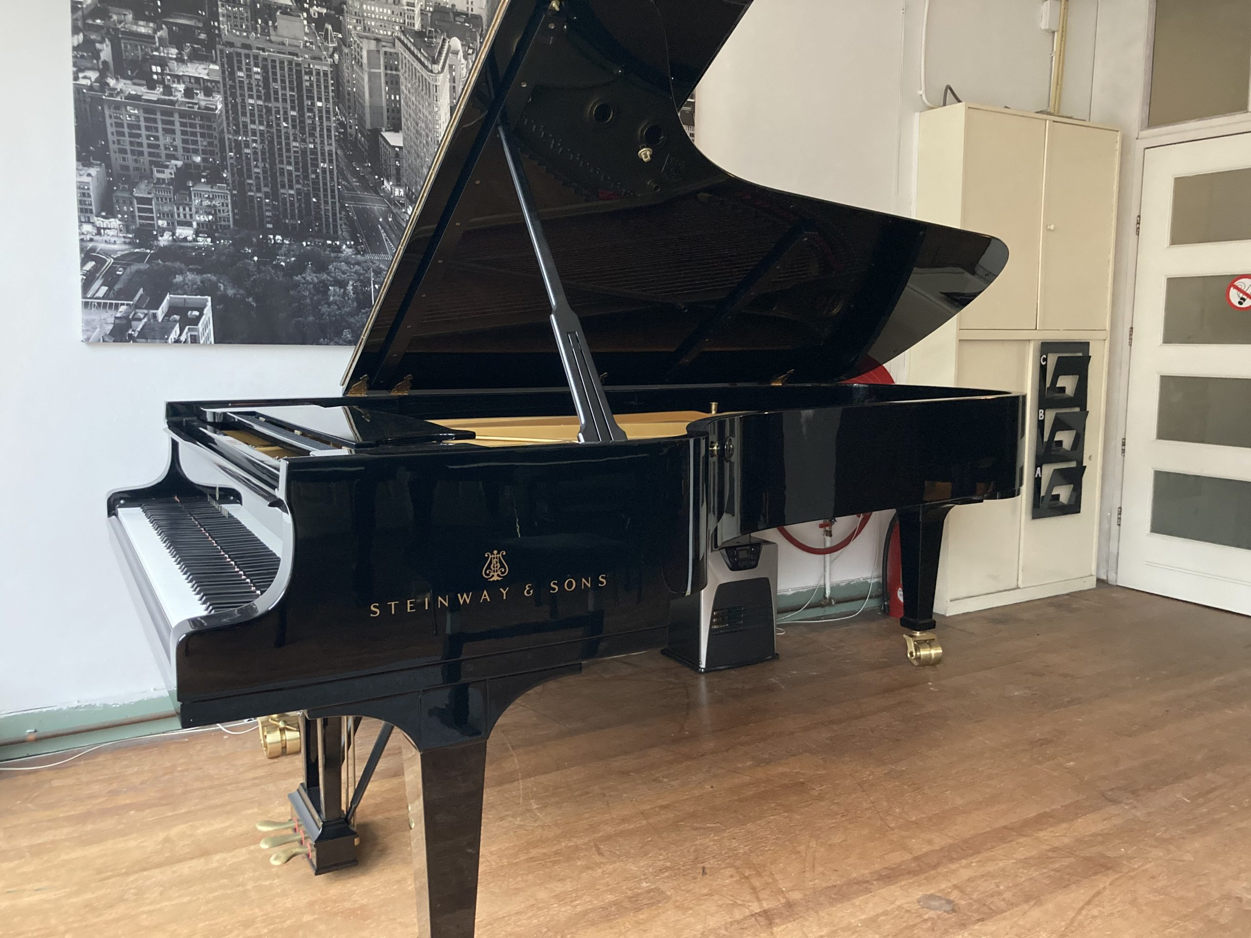Steinway & Sons D